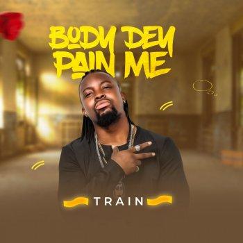 Testi Body Dem Pain Me - Single