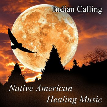 Testi Native American Healing Music