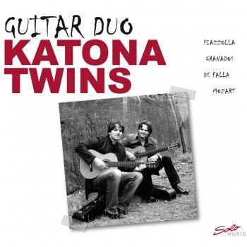 Testi Guitar Duo