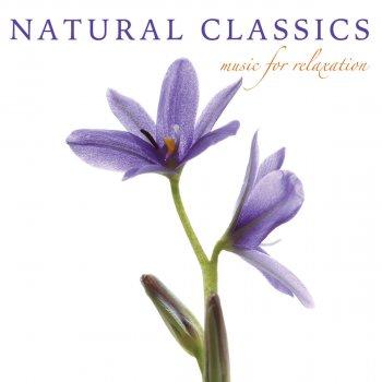 Testi Classical Bliss