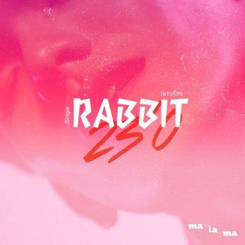 Testi Rabbit