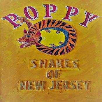 Testi Snakes of New Jersey