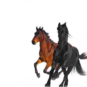 Old Town Road (Remix) by Lil Nas X feat. Billy Ray Cyrus - cover art