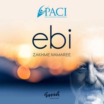 Testi Zakhme Namaree - Single