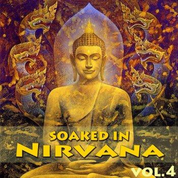 Testi Soaked In Nirvana, Vol.4