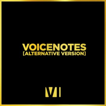 Testi Voicenotes (Alternative Version) - Single