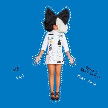 Testi 1+1 (feat. Amir) [Banx & Ranx Remix] - Single