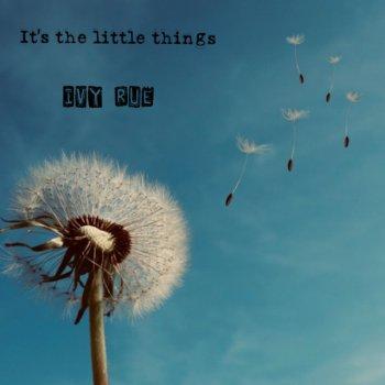 Testi It's the Little Things