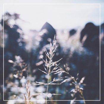 Testi Love Anyway - Single