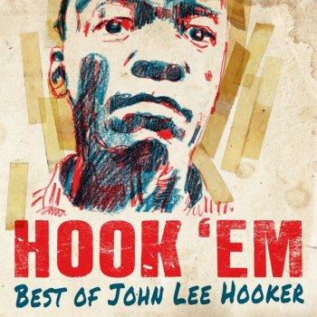 Testi Hook 'Em - Best of John Lee Hooker