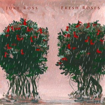 Testi Fresh Roses