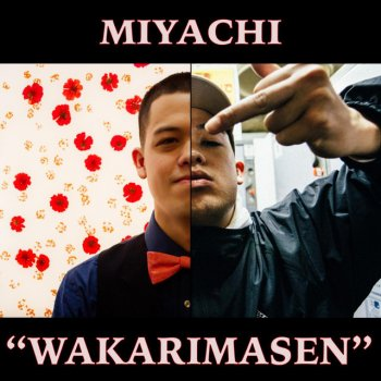 Wakarimasen lyrics – album cover