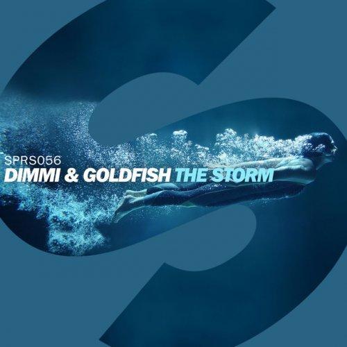 Dimmi feat  GoldFish - The Storm Lyrics | Musixmatch