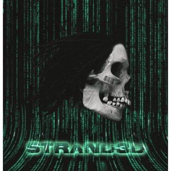 Testi Strand3d
