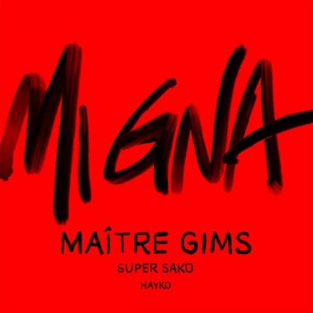 Testi Mi Gna (with Super Sako) [feat. Hayko] [Maitre Gims Remix]