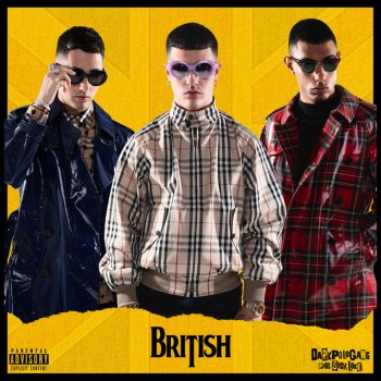 Testi British