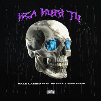 Testi Mea Muri Tu (feat. MV Killa & Yung Snapp) - Single