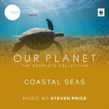 "Testi Coastal Seas (Episode 4 / Soundtrack From The Netflix Original Series ""Our Planet"")"