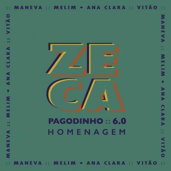 Testi Zeca Pagodinho 6.0 - Homenagem