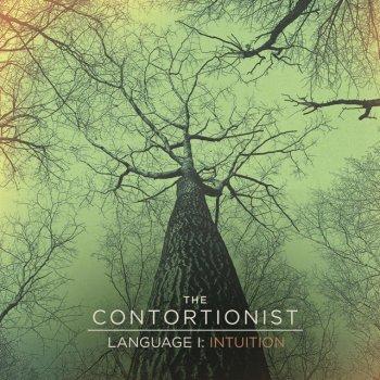 Testi Language I: Intuition