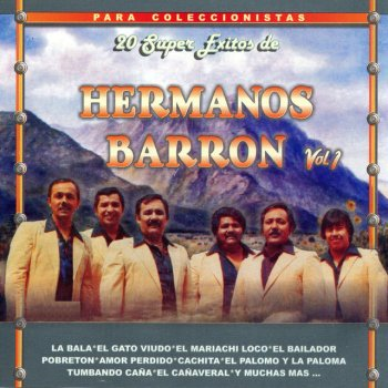 Testi 20 Super Exitos de Hermanos Barron Vol. 1