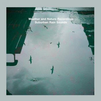 Testi Suburban Rain Sounds - EP