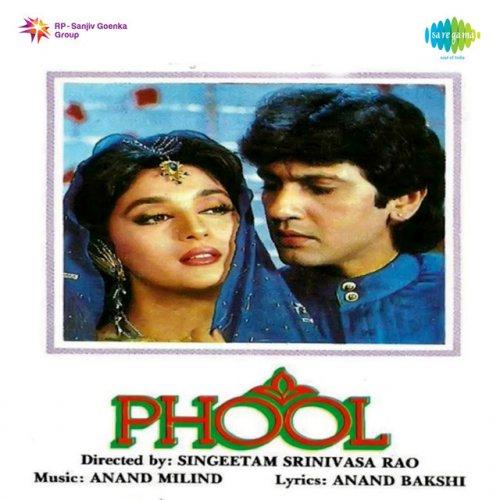 Udit Narayan Phool Phool Pe Bani Hai Teri Tasveer Lyrics Musixmatch
