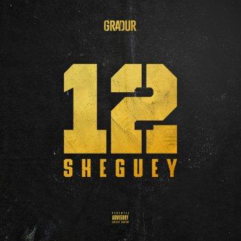 Testi Sheguey 12