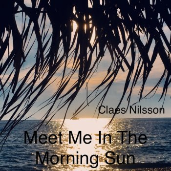 Testi Meet Me In the Morning Sun - Single