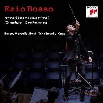 Testi StradivariFestival Chamber Orchestra