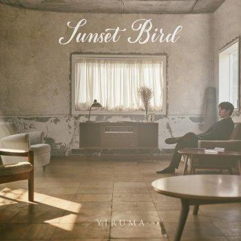 Testi Sunset Bird - Single