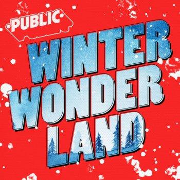 Testi Winter Wonderland - Single