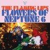 Flowers Of Neptune 6
