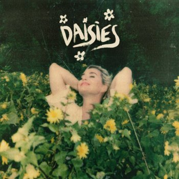 Testi Daisies - Single