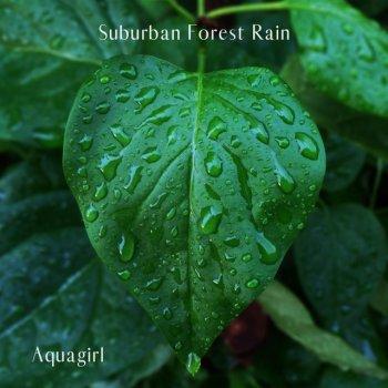 Testi Suburban Forest Rain