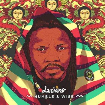 Testi Humble & Wise