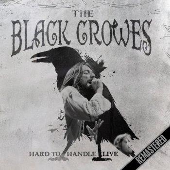 Testi Hard To Handle - Live (Live: Houston, TX 6 Feb '93)