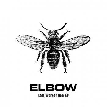Testi Lost Worker Bee - EP