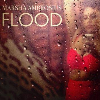 Testi Flood