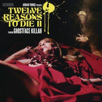 Testi Twelve Reasons to Die II