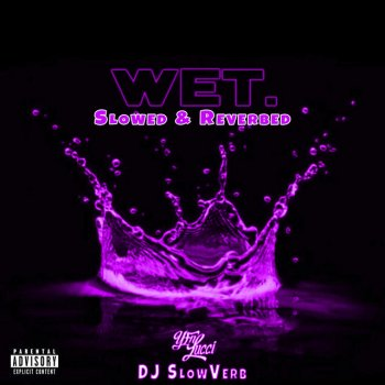 Testi Wet (She Got That…) [Slowed & Reverbed] - Single