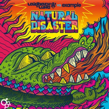 Natural Disaster - Instrumental Mix (Testo) - Example feat
