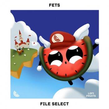 Testi File Select - Single