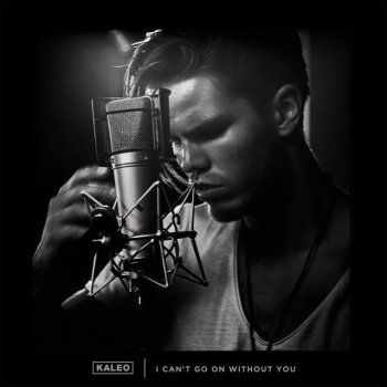 I Can't Go On Without You lyrics – album cover