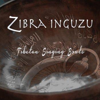 Testi Tibetan Singing Bowls - EP