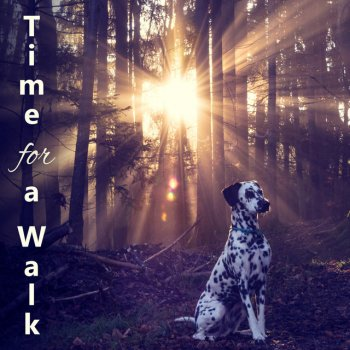 Testi Time for a Walk - Calming Music to Relax and Calm Down Your Dog, Pet Relaxation, Stress Relief