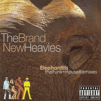 Testi Elephantitis: The Funk + House Remixes