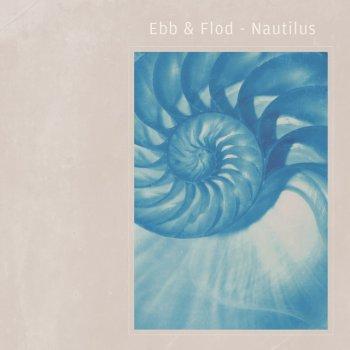 Testi Nautilus