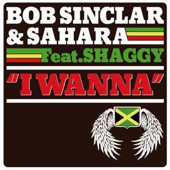 I Wanna - Reggae Version by Sahara & Bob Sinclar feat. Shaggy - cover art