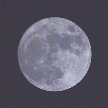 Testi Moonsong - Single